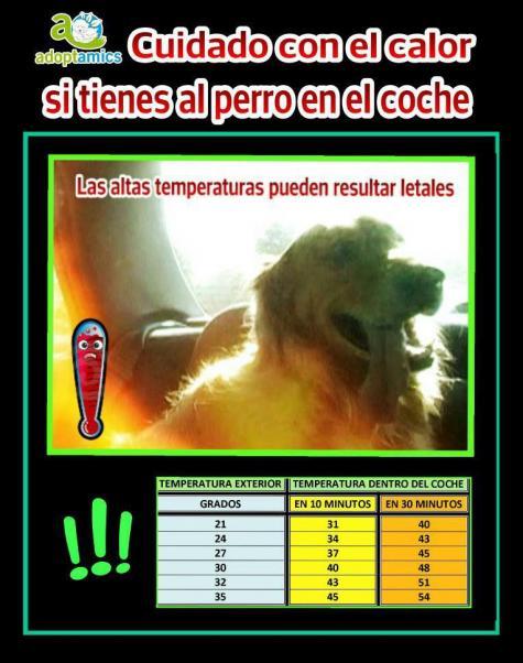 More Hot Pictures from Extrema Images Of Juega Con El Perro Videos De