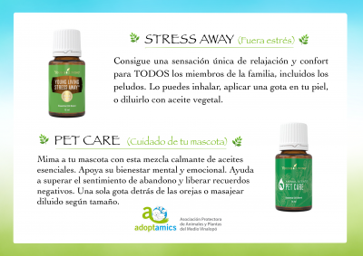 Productos solidarios Young Living